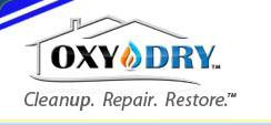 OxyDry Proves To Be The Mold Expert In Oklahoma City