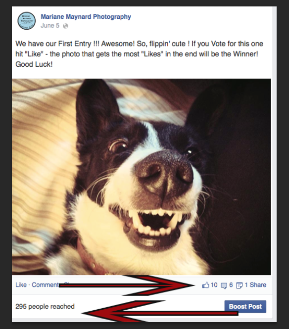 Facebook: Making Group Pages & Business Pages Work In Your Favor