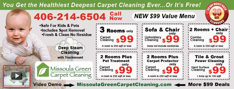 Print Advertising For Carpet Cleaners: My Experience And Conclusion2